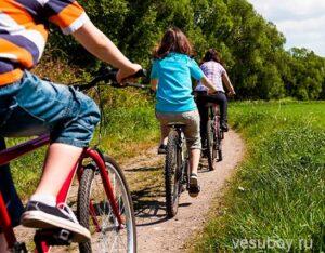 Велопрогулки - профилактика лишнего веса